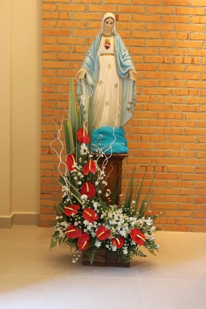 50 anos da Província Imaculado Coração de Maria
